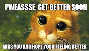 Feel Better Meme - pweassse get better soon miss you and hope your feeling better