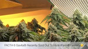 Best 25 Marijuana Grow Lights by 2018 Best Cannabis Led Grow Lights Youtube