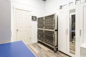 Dog Grooming Salon Floor Plans Dodge City Grooming Salon