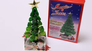 magic tree making kit youtube