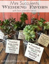 plant wedding favors succulents in jars wedding favors a claireification
