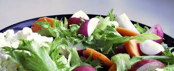 vegetarische küche start holtmanns restaurant
