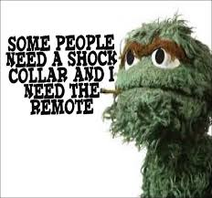 Oscar The Grouch Meme - the only thing i dont like about you is