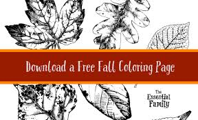 free printable fall coloring page