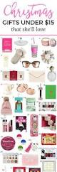 Christmas Gifts Under 10 The 25 Best Christmas Gift Ideas Ideas On Pinterest Xmas Gifts