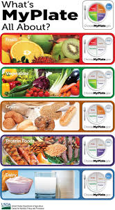 myplate teaches the 5 food groups fruits vegetables grains