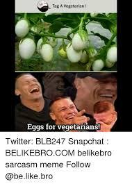 Memes Vegetarian - tag a vegetarian eggs for vegetarians twitter blb247 snapchat