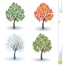 set of apple trees stock vector image 51216672