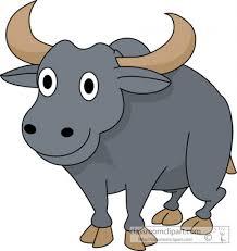 buffalo png transparent png images pluspng