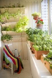 ideas for a small but inspired and inspiring balcony