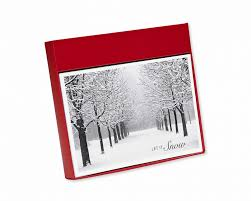 let it snow holiday boxed cards 14 count shop american greetings