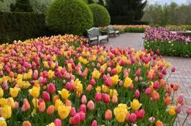 Chicago Botanic Garden Restaurant Chicago Botanic Garden Walk Visit Lake County