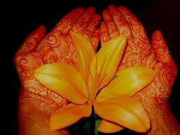 henna little india toronto the world u0027s best photos of 7enna