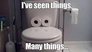 Meme Toilet - my first meme meme by familyplayzmc yt memedroid