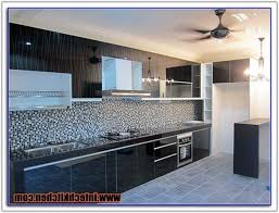 Frosted Glass For Kitchen Cabinet Doors by Frameless Glass Cabinet Doors Kitchen Cabinet Home Decorating