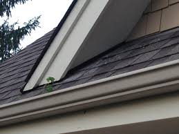 gap roofing large gaps between roof and soffits good for birds bad for