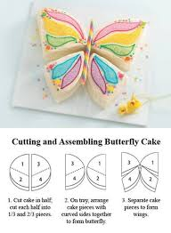 how to make a cake for a girl best 25 kids butterfly cake ideas on butterfly cakes