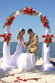 Wedding Arches Miami Pink Gerbera Daisy Arch Decor Wedding Pinterest Pink Gerbera