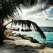 Renaissance Aruba Ocean Suites Floor Plan 19 Best Renaissance Aruba Images On Pinterest Aruba Resorts