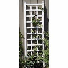 orlandistatuary dahlia plaque wall decor reviews wayfair loversiq