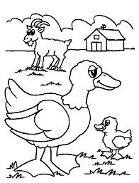 farm animal coloring pages preschoolers coloring