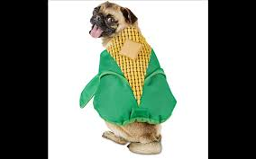 Corn Halloween Costume Cutest Halloween Dog Costumes Inspired Food Today
