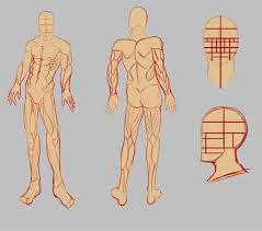 Google Body Anatomy Art Body Reference Google Search Art References Pinterest
