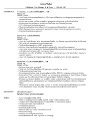 resume templates account executive position salary in nfl what is a franchise accounts coordinator resume sles velvet jobs