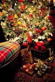Fraser Christmas Tree Permit by 1038 Best Home For The Holidays Images On Pinterest Christmas