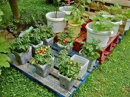 pallet vegetable garden ideas wonderer me
