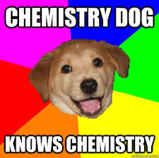 Chemistry Dog Meme - chemistry dog meme dog best of the funny meme