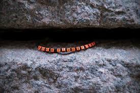 humanity bracelets f cancer bracelet in rubber bracelets