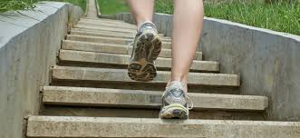 does stairs climbing help to lose weight weight sentinel