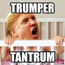 Tantrum Meme - image jpg