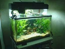simple aquarium design ideas sump designs decoration u0026 furniture