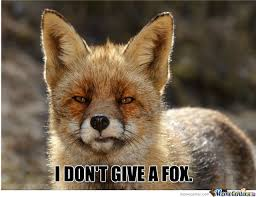 Meme Fox - serious fox is serious by fadhilanthem meme center