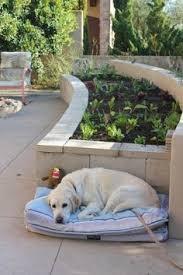 40 cool ways to use cinder blocks yard ideas yards and gardens