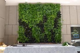 Vertical Wall Garden Plants by Plants On Walls Vertical Garden Systems June 2012