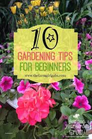 Simple Flower Garden Ideas How To Plant A Flower Garden Best Of Simple Flower Bed Ideas Best