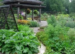 kitchen garden design ideas vegetable garden design small dutapetanimuda org