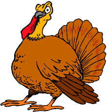 turkey pictures for thanksgiving free clip