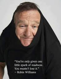 Awesome Meme Quotes - awesome robin williams quote