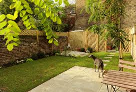 Backyard Landscaping Ideas For Dogs by Coucou Design Small London Garden Green And White Planting Dog