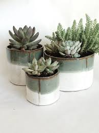 the 25 best ceramic plant pots ideas on pinterest plants indoor