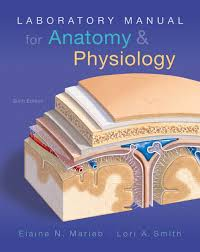 Human Anatomy Physiology Laboratory Manual Pdf Marieb U0026 Smith Laboratory Manual For Anatomy U0026 Physiology 6th