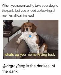 Ving Meme - 25 best memes about ving ving memes