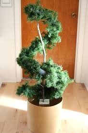 Lollipop Topiary Learn How To Make An Evergreen Spiral Topiary How Tos Diy