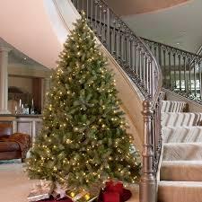 douglas fir christmas tree 9 ft downswept douglas fir medium clear pre lit christmas tree