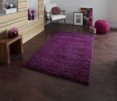 Bedroom Ideas Purple Carpet Modern Purple Bohemian Purple Bedroom Ideas That Has Purple Wall