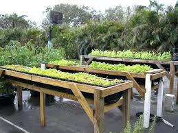 vegetable garden beds raised image of raised bed vegetable garden